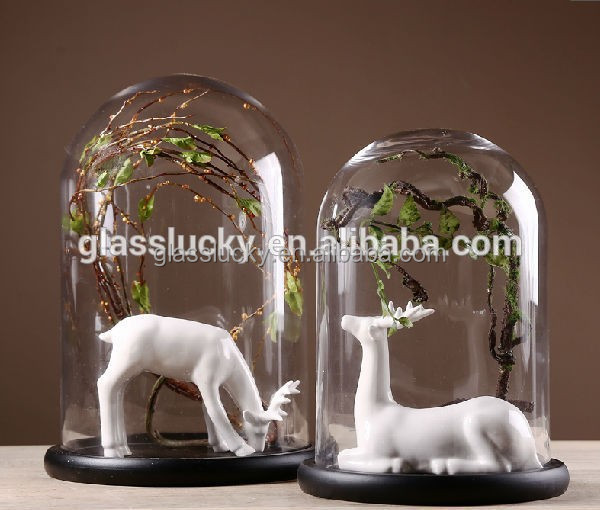 Hot sale clear glass bell jar dome with wooden base/flower display in many size