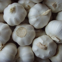 Hot Sale Natural Fresh Normal White Garlic / pure white and Red fresh garlic