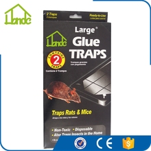 Outside Mouse Glue Trap Removal with Good Performance