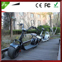 Electro Electric Motor Bike Kit For Adults