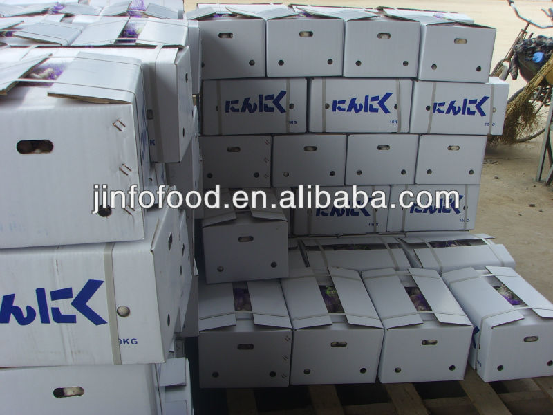 Chinese fresh garlic in cold storage