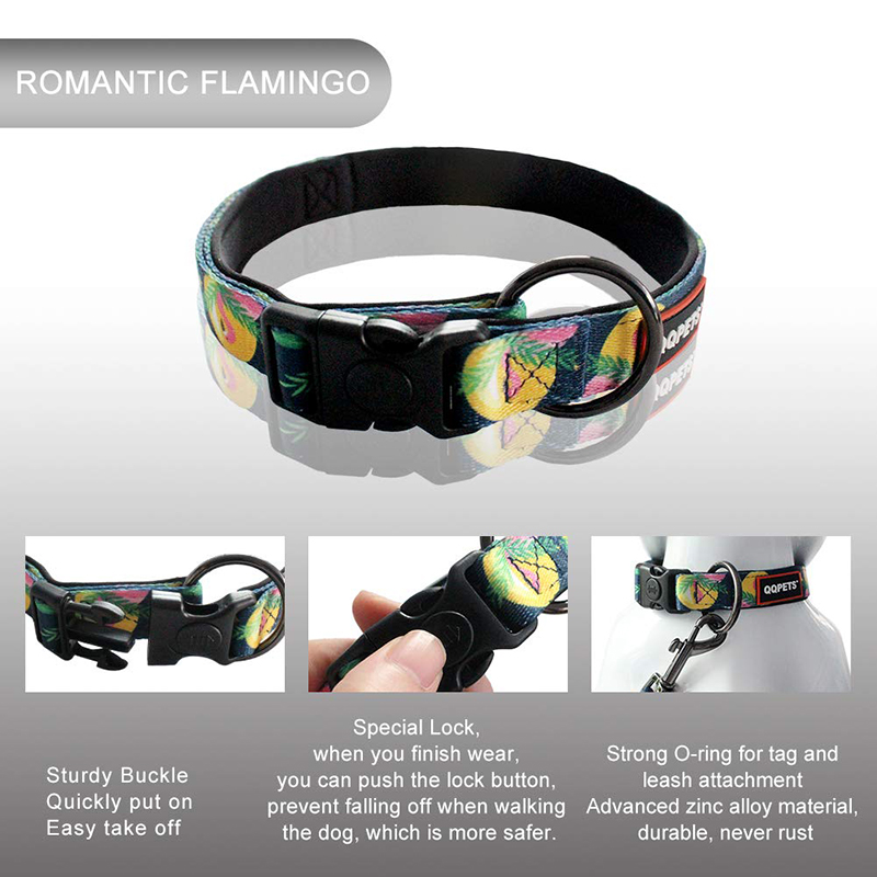 More colorful new design sublimation printing pet collars and leash wholesale