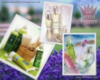Fragrance from professional manufacturer
