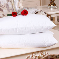 Hot-Selling Anti Wrinkle Goose Feather Pillow