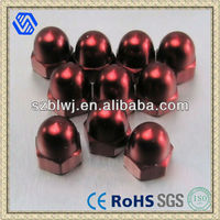 Environmental Hex Domed Cap Nuts