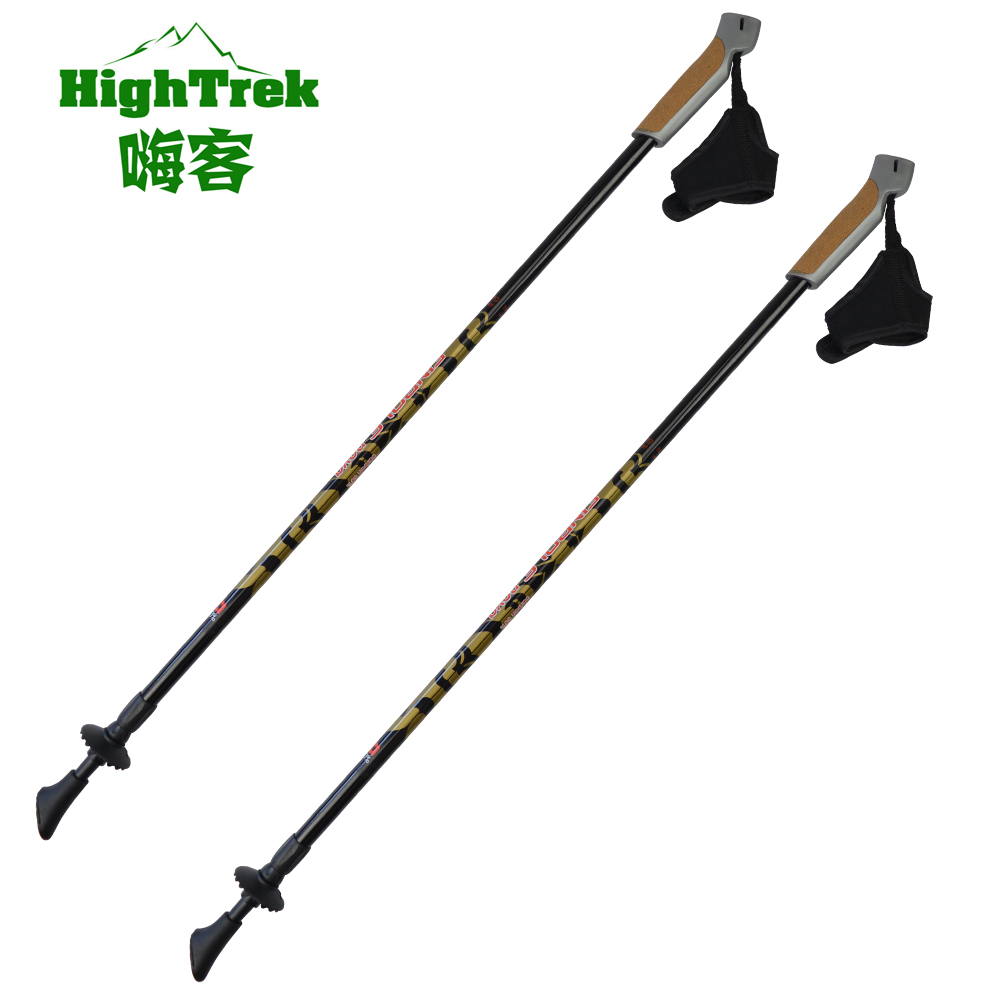 Wholesale new arrival gs approved 100% carbon nordic walking stick