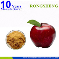 100% Pure Natural apple flavor powder