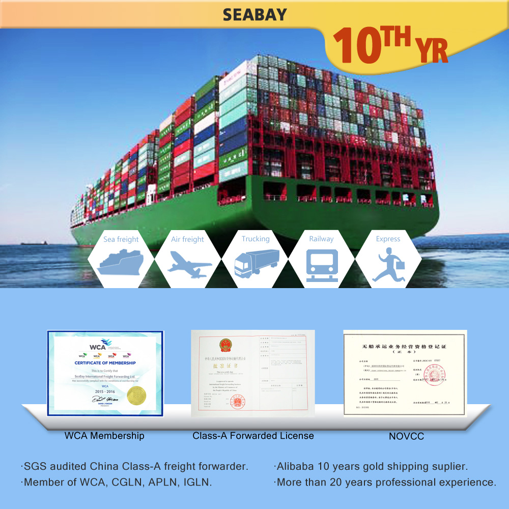 china container sea freight shipping to dubai