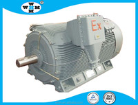 CE certified IE3 Three Phase AC Motor