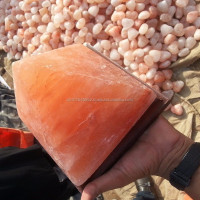 Himalayan Salt Lamps Wholesale