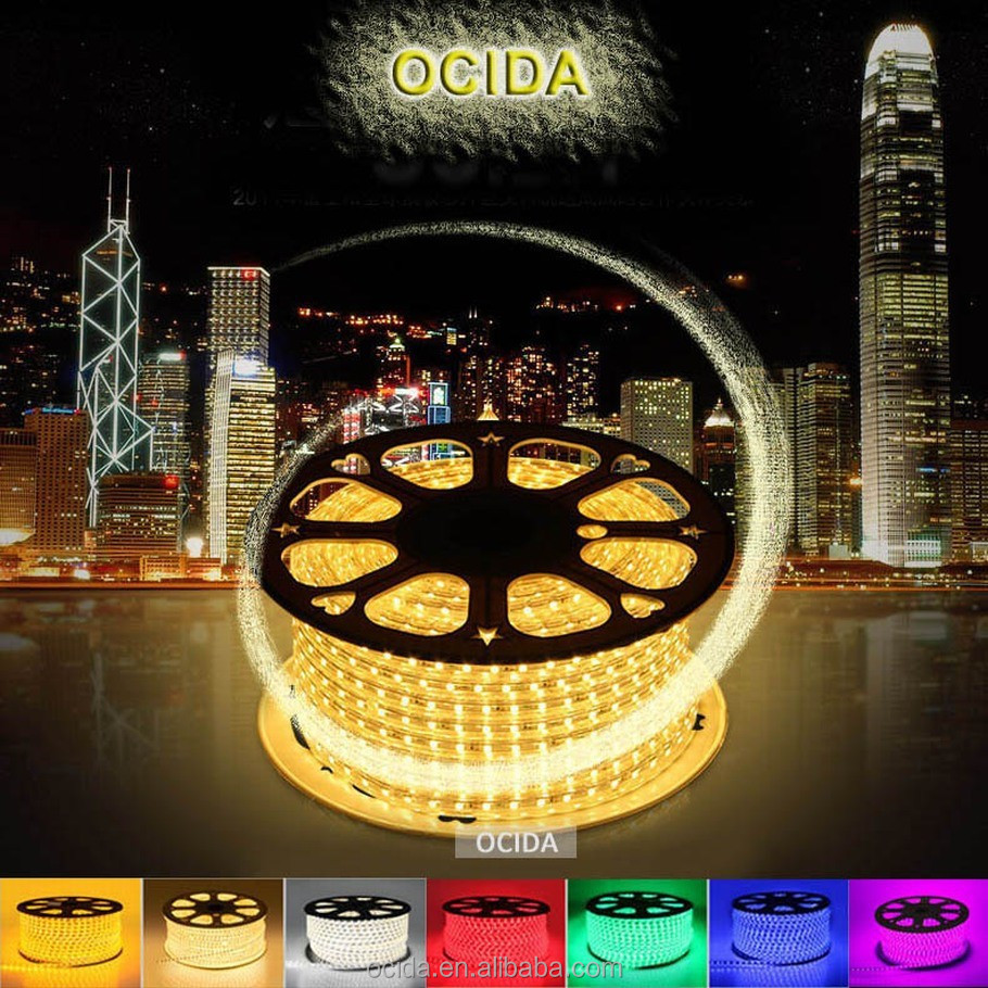 Alibaba website zhongshan supplier led strip light 220 volts
