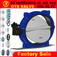 BV-SY-217 ductile iron double eccentric butterfly valve dn1200 for europen country