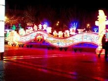 Chinese New Year Festival Lantern Show