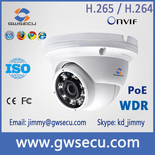 3.0Mp Sony IMX123 CMOS 120db WDR IP66 WaterProof IR Dome IP Camera
