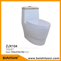 BAISHI New High Quality Sanitary Ware Japanese Best Toilet Price wc Toilet Accessory