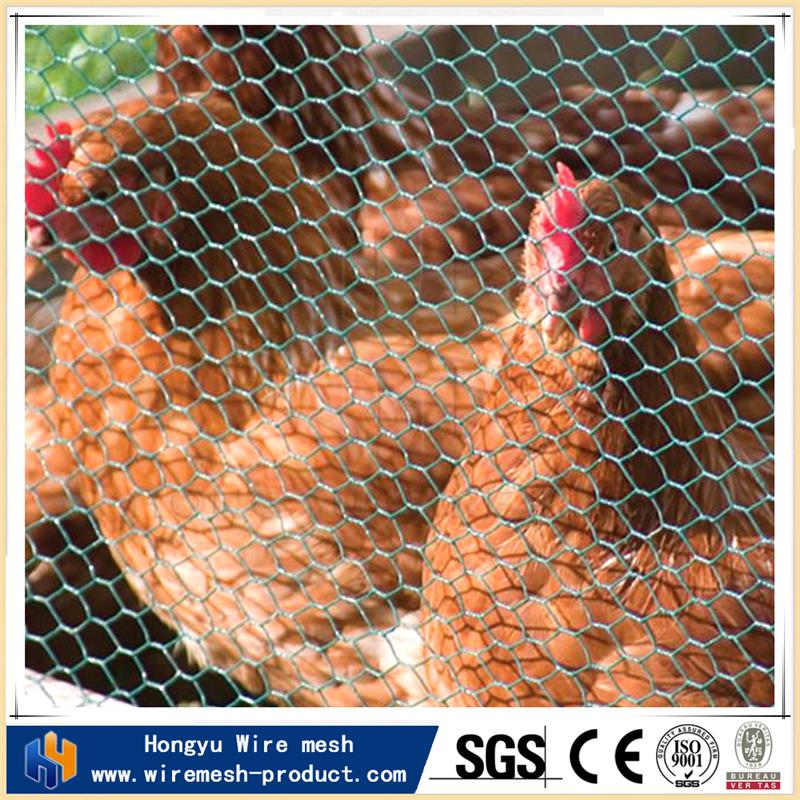 chicken coop wire netting cheap galvanized welded rabbit cage wire mesh cheap chain link fencing