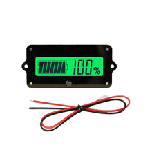 BW-LY4 12V battery tester battery indicator battery monitor for car ebike