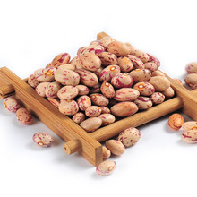 Organic Huanan light speckled kidney beans with round shape