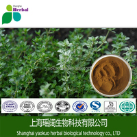 100% Natural plant extracts thyme liquid extract/thymol 20% 30% hot selling