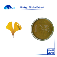Factory Price Top Quality Organic Ginkgo Biloba Extract
