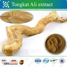 Hihg quality tongkat ali root extract 200 1 | tongkat ali 200:1 | tongkat ali extract 200:1