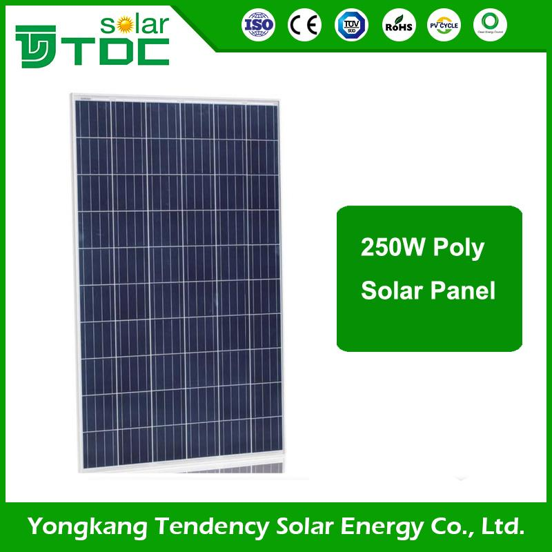 Factory Hot Sales Tempered Glass 200w high efficiency poly solar panel s with factory price