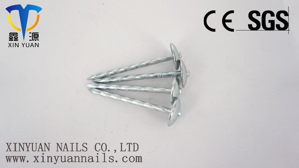 Iron wire roofing nail with umbrella head factory 9G*2.5''