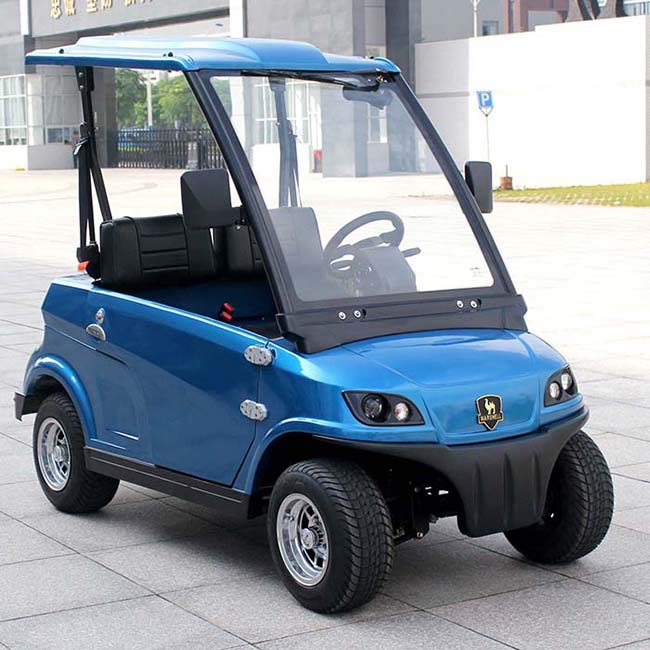 China OEM supply 2 seats electric car LSV DG-LSV2 with CE approved