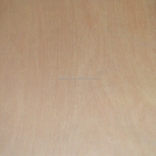 3.6mm cheap price good quality eucalyptus core red cedar plywood