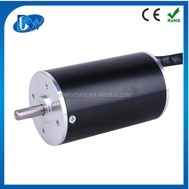 small 12V 20W brushless electric dc motor bldc in China