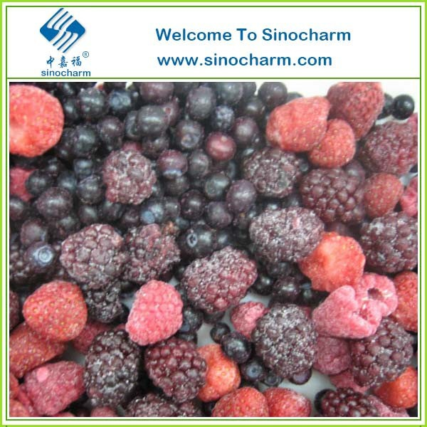 Strawberry Raspberry Blackberry Blueberry Mixture IQF Mixed Berry