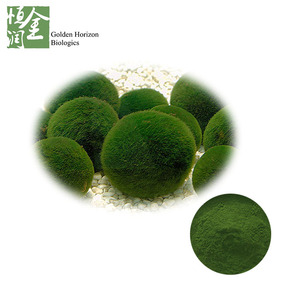 chlorella powder in bulk/Chlorella vulgaris p.e/ 50%Protein Chlorella vulgaris powder