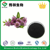 Factory Supply Trifolium Pratense Extract Bbiochanin A and Formononetin