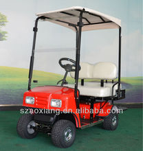 2015 24V1000w 2 person Curtis Programmable CE approved electric cruiser cheap golf cart for sale