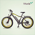 hot sale ebike/electric bike made in China for sale