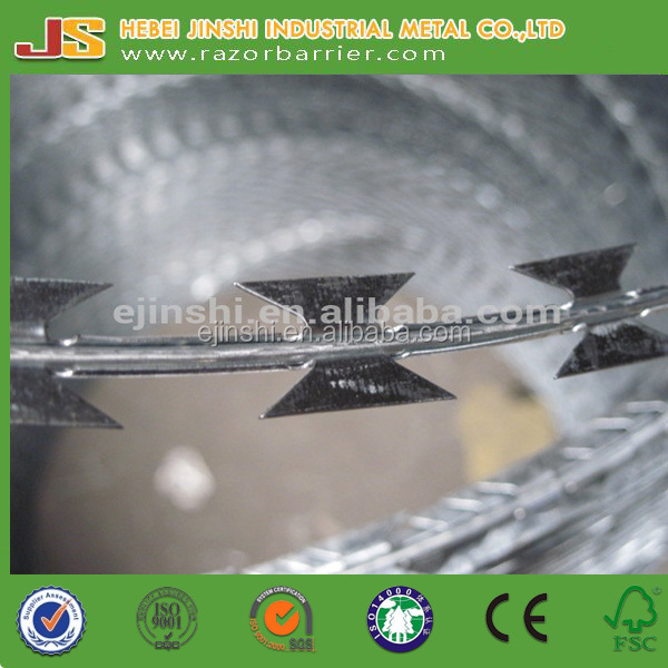 Military High Security Hot Dip Galvanized 900 mm Concertina Blade Barbed Razor Wire China Made