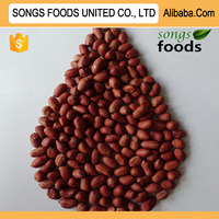 Red Skin Peanuts Kernels Best Nutrition Red Kidney Beans