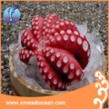 Whole part wholesale fresh frozen octopus
