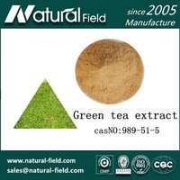 GreenTea Extract Manufacturer , Tea Polyphenols 98%