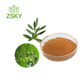 Top Quality Olive Leaf Extract 10%-60% Oleuropein