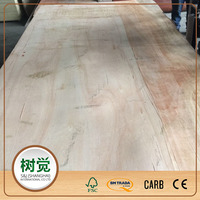 5mm Eucalyptus/Hardwood Packing Plywood