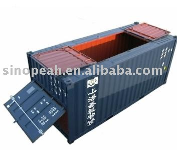 20ft bulk cargo container special container