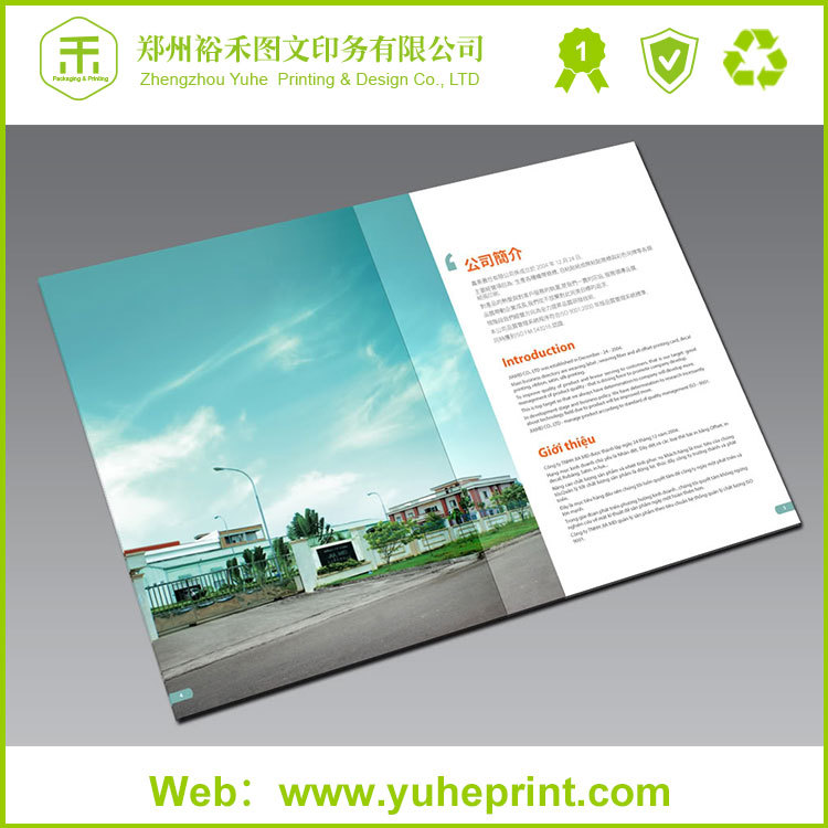 Chinese Factory OEM Production Custom Wholesale Saddle Stitching Printing Turkish Living Room/Waltons Office Furniture Catalogue
