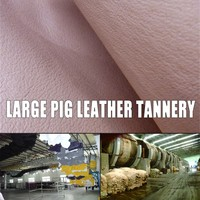 exotic full grain skin leather pig leather for shoes lining good touch fashion