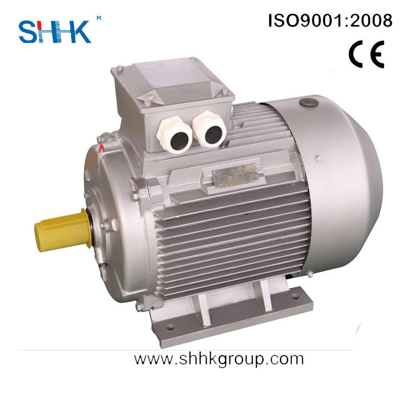 ultra efficient asynchronous electric motor of China
