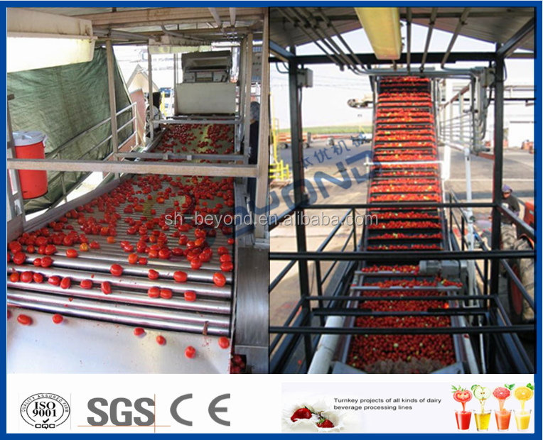 Complete Full Automatic Tomato Paste Production Line
