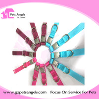 Best Selling Cheap offer Factory Price Metal buckle pets collars and Leads