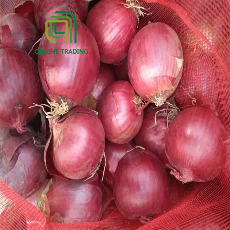 wholesale different types china red onion in bulk