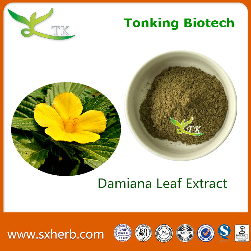 Pure natural damiana leaf extract powder