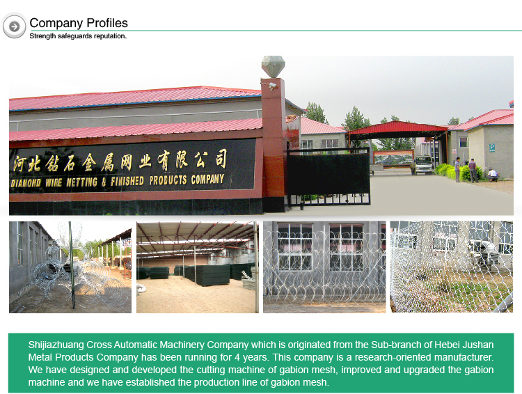 China supply high tensile cheap cattle field fence